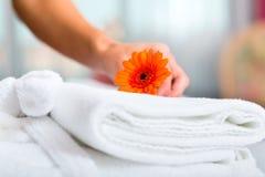 Criada que hace servicio de habitación en hotel Imagenes de archivo