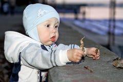 A criança é surpreendida Foto de Stock Royalty Free
