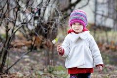 Criança adorável que tem o divertimento no dia do outono imagens de stock