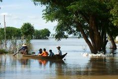 Criança, barco de fileira, pato, campo vietnamiano Imagem de Stock