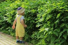 A criança, bebê, menino anda no parque Fotos de Stock