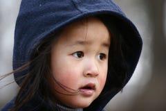 Criança bonito Imagem de Stock