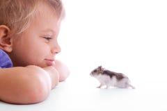 Criança bonito com hamster Fotografia de Stock Royalty Free