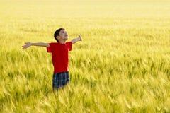 Criança bonito que aprecia o sol Imagens de Stock