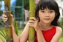 Criança chinesa fotografia de stock royalty free