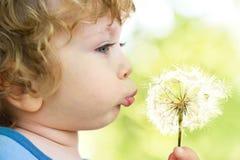 Criança com dente-de-leão Fotografia de Stock