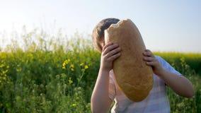 A criança com fome come o alimento no prado no luminoso, jovem com pão do naco à disposição no campo do fundo, comer do rapaz peq vídeos de arquivo
