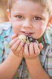 Criança com galinhas do bebê Fotografia de Stock