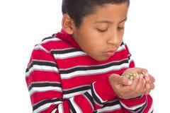 A criança com mãos encheu-se com os Sprouts de feijão Fotografia de Stock Royalty Free