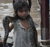 Criança com serpente Fotografia de Stock Royalty Free