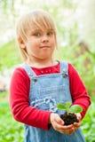 Criança com sprout imagem de stock royalty free