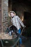 Criança com um carrinho de mão com um gato Imagem de Stock