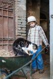 Criança com um carrinho de mão com um gato Imagens de Stock Royalty Free