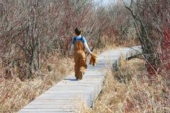 Criança com urso da peluche Fotos de Stock Royalty Free