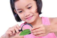Criança curiosa Foto de Stock