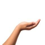 Criança da mão no blackground branco Fotografia de Stock Royalty Free