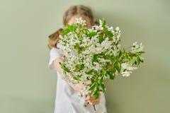 A criança da menina dá a mola ramos de florescência da cereja das flores brancas, fundo verde da parede imagens de stock royalty free