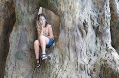 A criança da menina fora senta-se na árvore com pintura da cara da borboleta Imagens de Stock