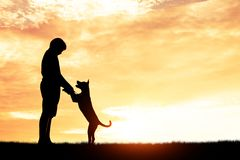 Criança da silhueta que joga com cães foto de stock royalty free