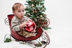 Criança de Ho Ho Ho em pouco trenó do Natal Fotos de Stock Royalty Free