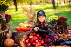 A criança de sorriso com a cesta das maçãs vermelhas que sentam-se no outono estaciona imagens de stock royalty free
