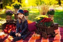 A criança de sorriso com a cesta das maçãs vermelhas que sentam-se no outono estaciona fotografia de stock royalty free