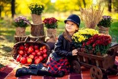 A criança de sorriso com a cesta das maçãs vermelhas que sentam-se no outono estaciona fotos de stock