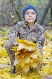 Criança de sorriso que joga com as folhas de outono caídas Menino que guarda o grupo das folhas de bordo na floresta imagem de stock royalty free