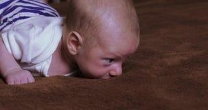 A criança do menino aprende rastejar vídeos de arquivo