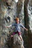 A criança do menino fora escala a árvore com pintura da cara do tigre Fotos de Stock