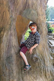 A criança do menino fora senta-se na árvore com pintura da cara da borboleta Fotos de Stock