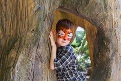 A criança do menino fora senta-se na árvore com pintura da cara do tigre Fotos de Stock Royalty Free