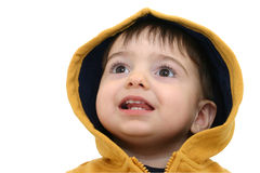 Criança do menino na roupa da queda Fotos de Stock
