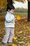 Criança do outono no parque Foto de Stock Royalty Free