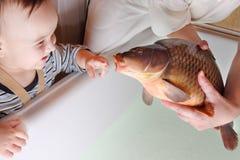 Criança e carpa Foto de Stock Royalty Free
