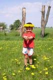 Criança e dentes-de-leão imagens de stock