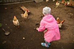 Criança e galinha Fotografia de Stock Royalty Free