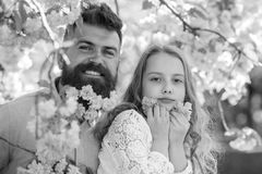 Criança e homem com as flores cor-de-rosa macias na barba Conceito da infância O pai e a filha nas caras felizes jogam com flores Fotografia de Stock Royalty Free