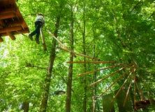 Criança em um parque da aventura da copa de árvore fotos de stock royalty free