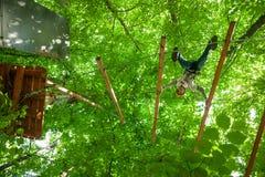 Criança em um parque da aventura da copa de árvore Foto de Stock