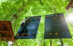 Criança em um parque da aventura da copa de árvore imagens de stock royalty free