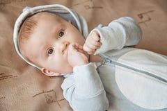 A criança em um terno azul com orelhas Fotografia de Stock
