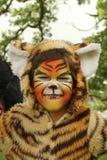 Criança em um terno do tigre com a cara pintada Foto de Stock