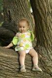 Criança em uma árvore imagem de stock