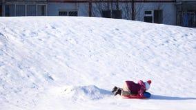 Criança em uma caminhada do inverno Uma menina está montando de uma corrediça da neve em uma placa plástica video estoque