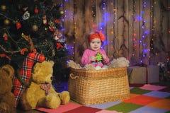 Criança em uma cesta perto da árvore do ano novo Imagens de Stock