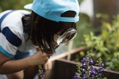 Criança em uma experiência e em uma ideia do jardim foto de stock