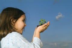 A criança entrega a planta da terra arrendada Imagens de Stock