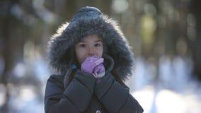 A criança está nas madeiras do inverno vídeos de arquivo
