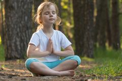 A criança está praticando a ioga na floresta fotografia de stock